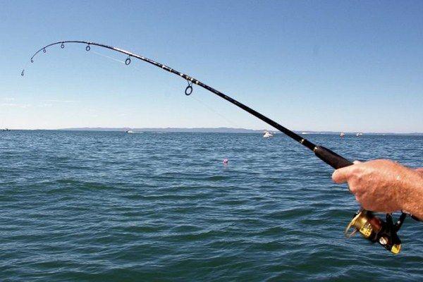 Як ловити рибу в чорному морі