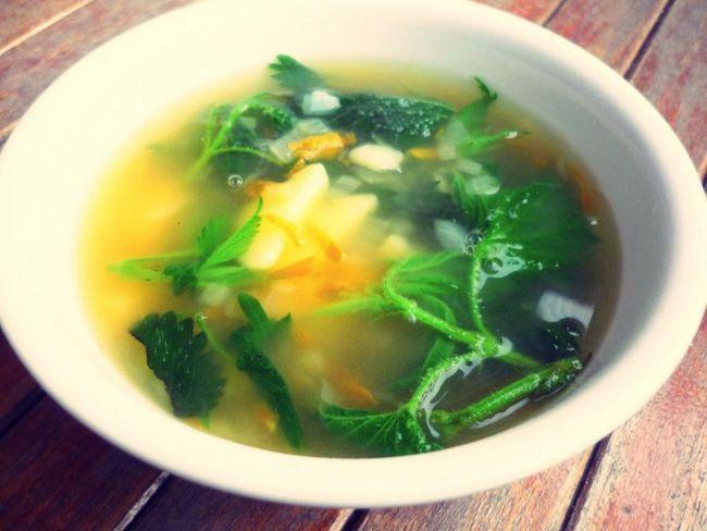 Як приготувати корисний суп з кропиви