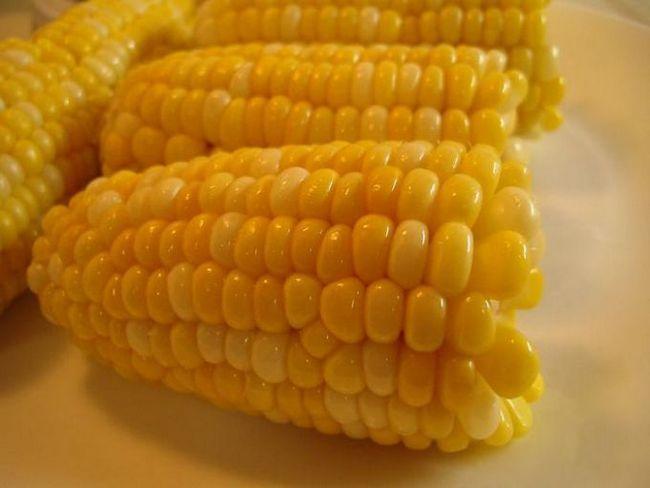 Як зварити кукурудзу в мультиварці