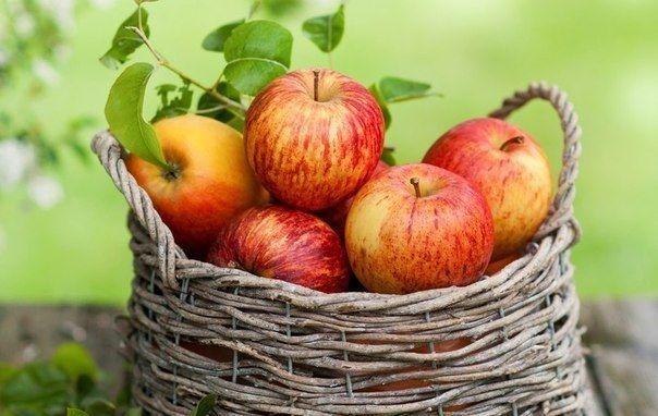 Які яблука найкорисніші