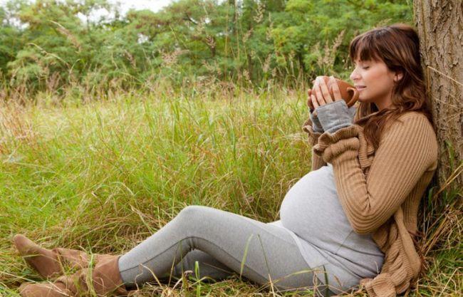 Які заспокійливі є для вагітних